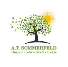 logo at sommerfeld